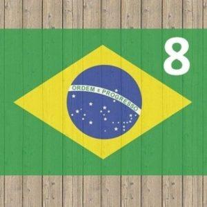 バモスアオブラジル3